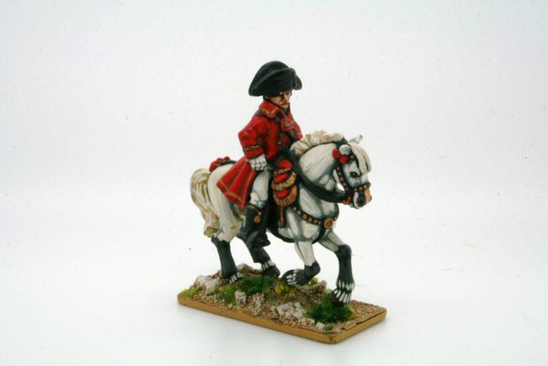 Napoleon takes charge!