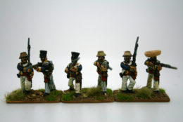 Trent Miniatures POLISH LEGION Ste Domingue 1802-03 CAR13