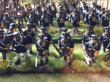 Landwehr With Muskets at tra