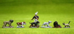 DOGS AND CAT PACK of 6 DeeZee MiniaturesDZ29 28mm Wargames