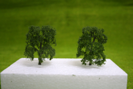 ASH TREES 2 per pack 3 inches  JTT Scenery HO/OO Scale LS94425