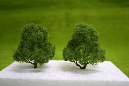 DECIDUOUS TREES 2 per pack 3 inches  JTT Scenery HO/OO Scale LS94300
