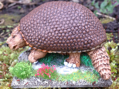 The finished Glyptodon!