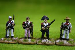 Trent Miniatures POLISH LEGION Bis. Ste Domingue 1802-03 CAR19