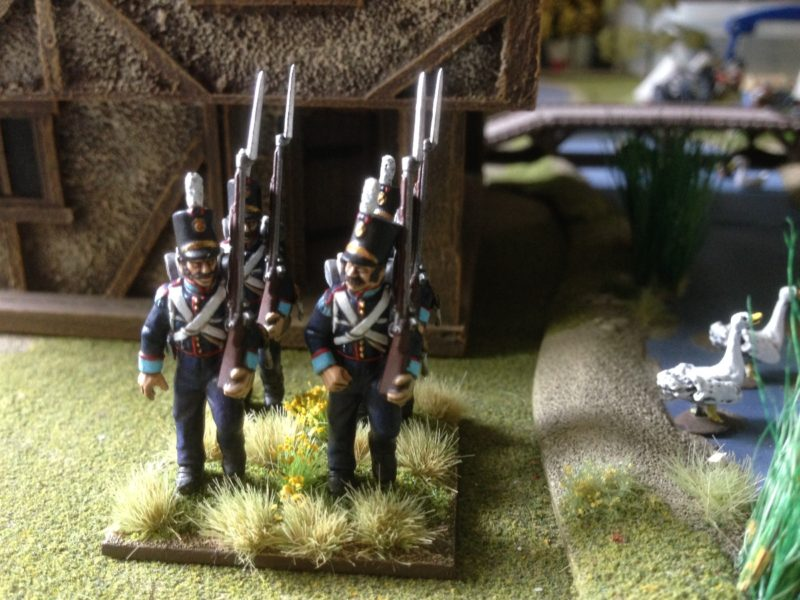 Portuguese Grenadiers