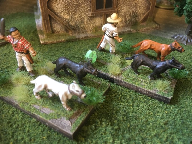Painted Chasseurs & dogs