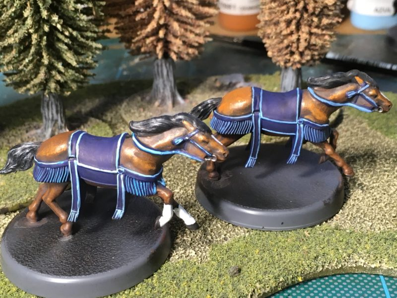 Both horses complete!