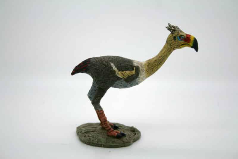 The Painted Terror Bird