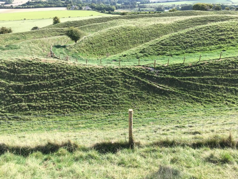 Maiden Castle - the complex banks and ditches protecting the summit.