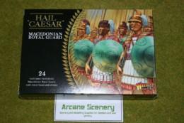 Hail Caesar Greek MACEDONIAN ROYAL GUARD Warlord Games 28mm set